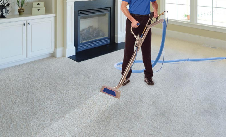 Professional carpet cleaning vs diy slinky life professional carpet cleaning vs diy solutioingenieria Gallery