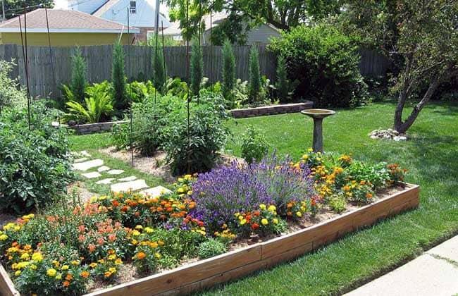 Slinky.com.au Landscaping Your Backyard Min